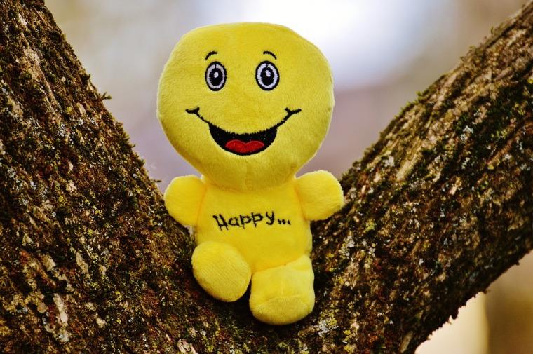 happy-1175549_960_720
